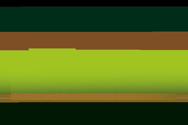 Viveros Coronado. Agencia de marketing online ZOOM DIGITAL