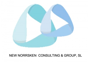 Logo NEW NORRSKEN CONSULTING & GROUP, SL ALBIA. Zoom Digital agencia de marketing online