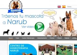 Diseño y posiconamiento web Escuela Canina Narub. Zoom Digital agencia de marketing online y posicionamiento web. Madrid