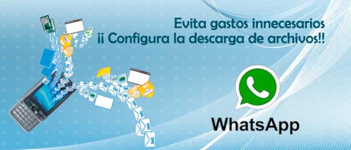 configuracion de archivos de descarga en WhatsApp. Zoom Digital
